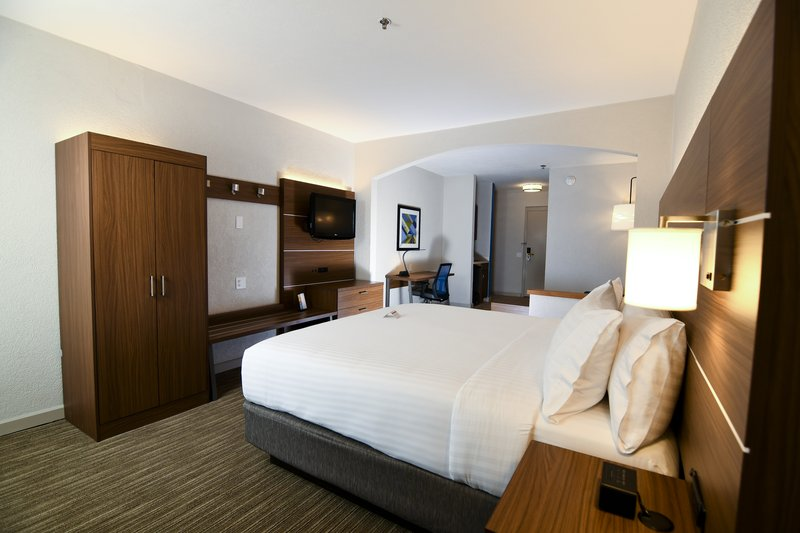 Holiday Inn Express & Suites Port Clinton - Catawba Island-One Room Suite King Bed With Sleeper<br/>Image from Leonardo