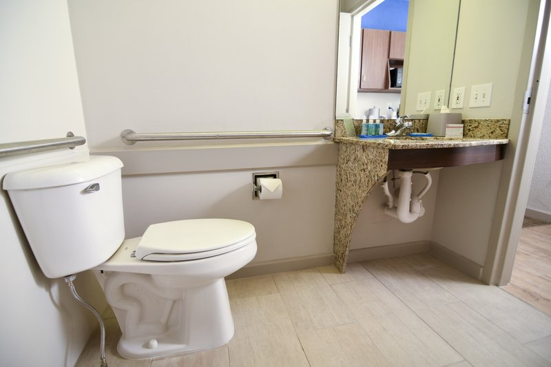 Holiday Inn Express & Suites Port Clinton - Catawba Island-Guest Bathroom ADA<br/>Image from Leonardo