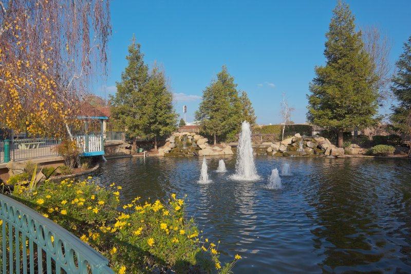 Holiday Inn Selma-Swancourt-Beautiful Pond with Waterfalls, Swans and Koi Fish<br/>Image from Leonardo