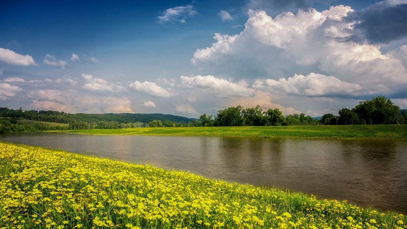 Holiday Inn Elmira - Riverview-A beautiful riverview in our backyard!<br/>Image from Leonardo
