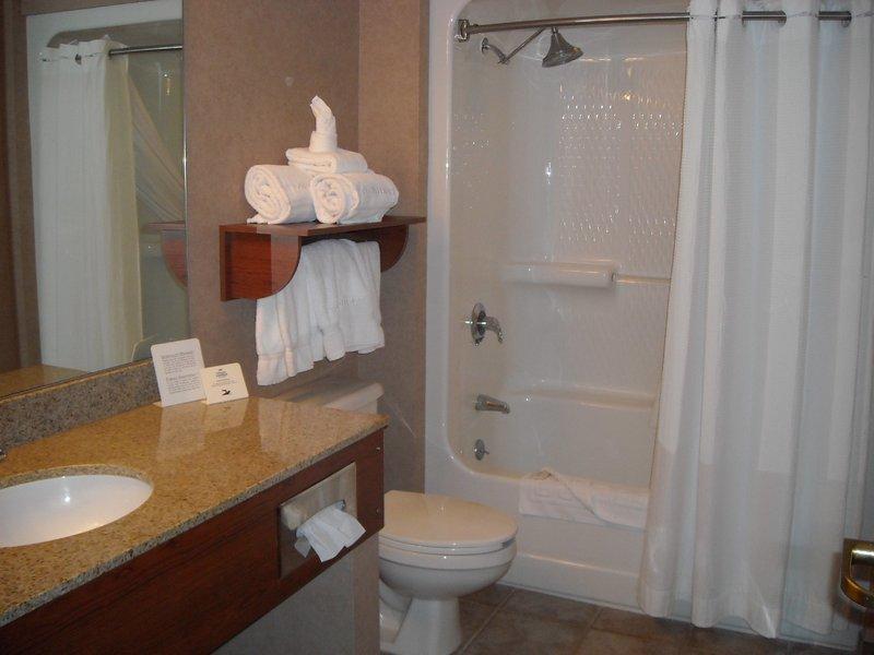 Holiday Inn Express & Suites Deadwood - Gold Dust Casino-Standard Guest Bathroom in Holiday Inn Express Hotel Deadwood SD<br/>Image from Leonardo