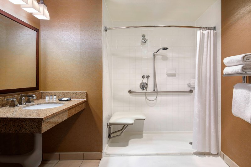 Sheraton Park Hotel-Accessible Bathroom - Roll-in Shower<br/>Image from Leonardo