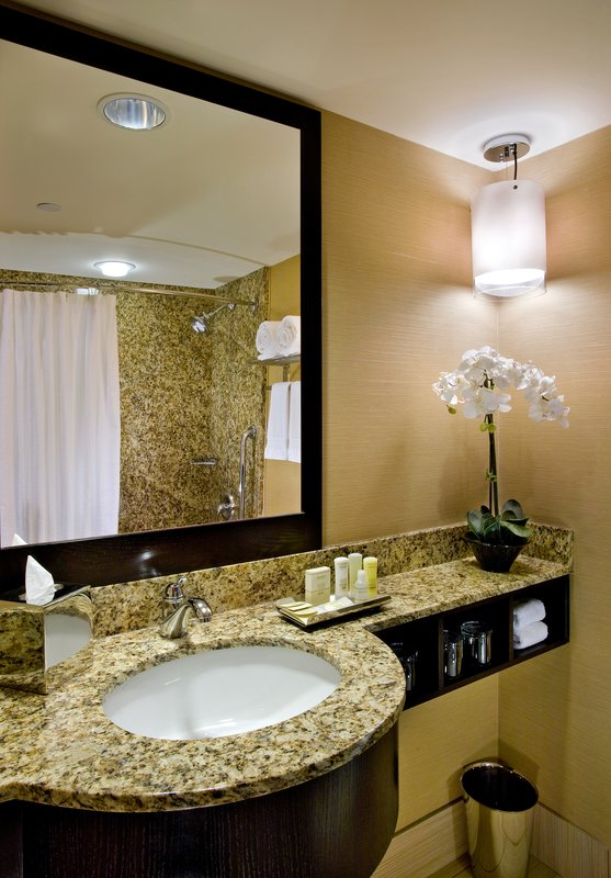 Crowne Plaza Lombard Downers Grove-Guest Bath<br/>Image from Leonardo