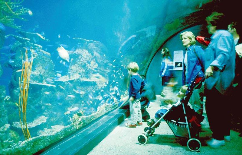 Crowne Plaza Denver Airport Convention Center-Denver Aquarium<br/>Image from Leonardo