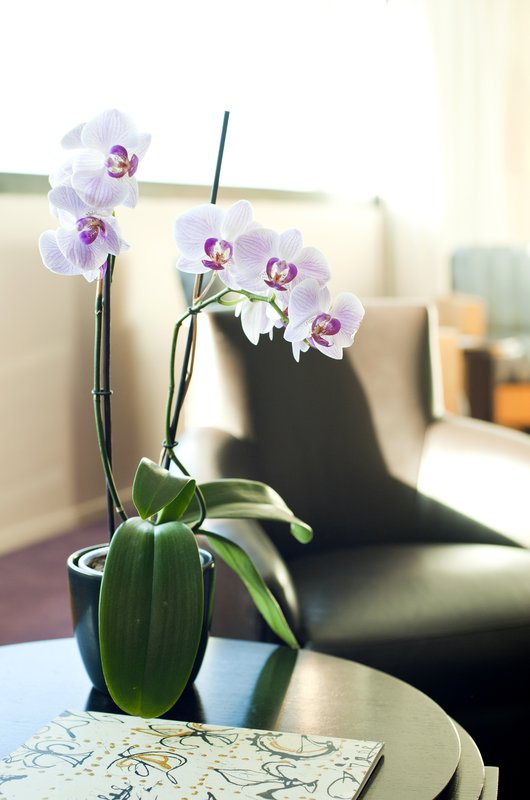 Crowne Plaza Lille - Euralille-Guest Room Feature<br/>Image from Leonardo