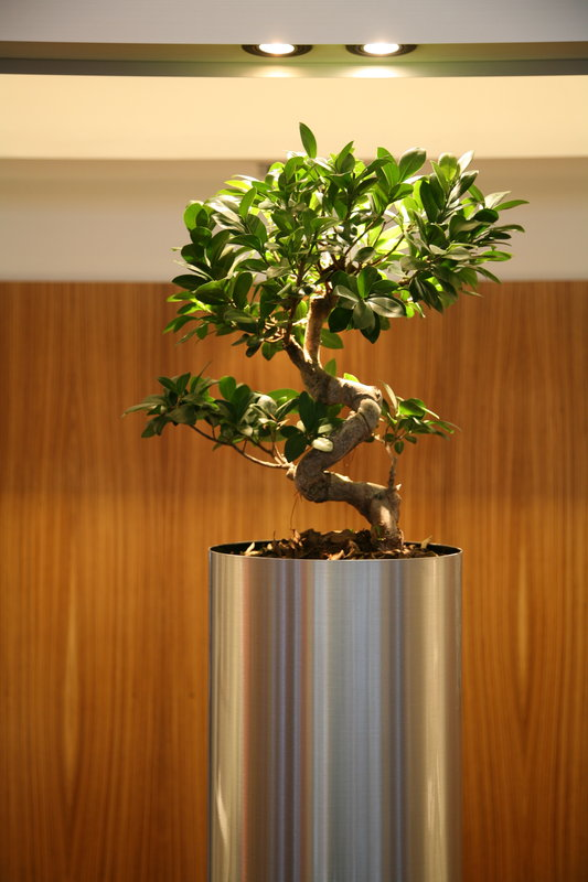 Crowne Plaza Lille - Euralille-Hotel Lobby<br/>Image from Leonardo