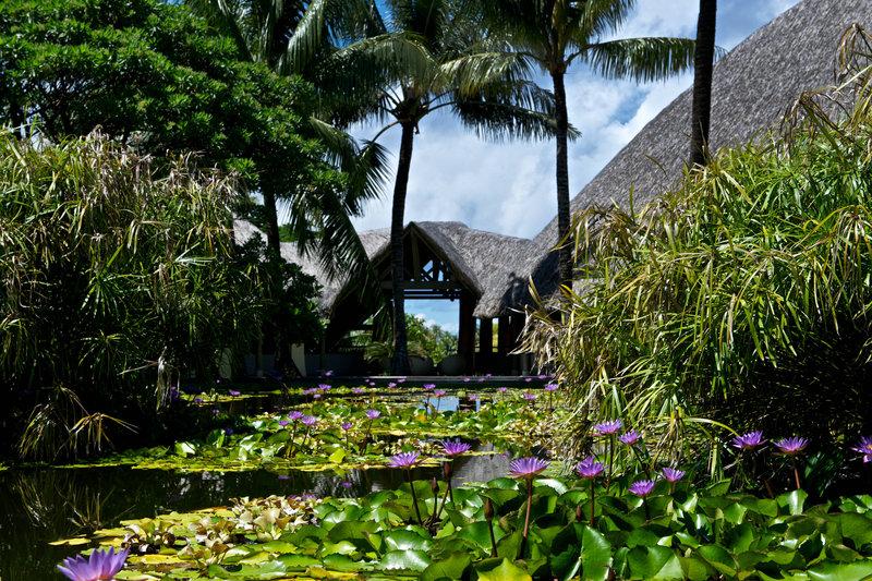 Le Meridien Bora Bora - Lobby Garden <br/>Image from Leonardo