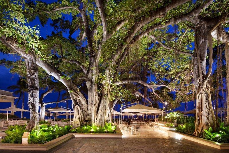 Moana Surfrider, A Westin Resort & Spa, Waikiki Beach - Banyan Tree <br/>Image from Leonardo