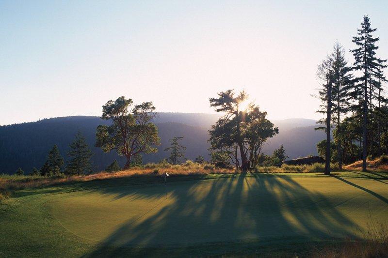 The Westin Bear Mountain Victoria Golf Resort & Spa-Bear Mountain Golf & Country Club Hole #4<br/>Image from Leonardo