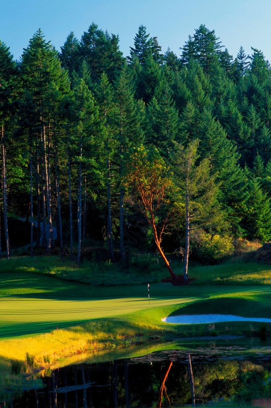 The Westin Bear Mountain Victoria Golf Resort & Spa-Mountain Hole #12<br/>Image from Leonardo