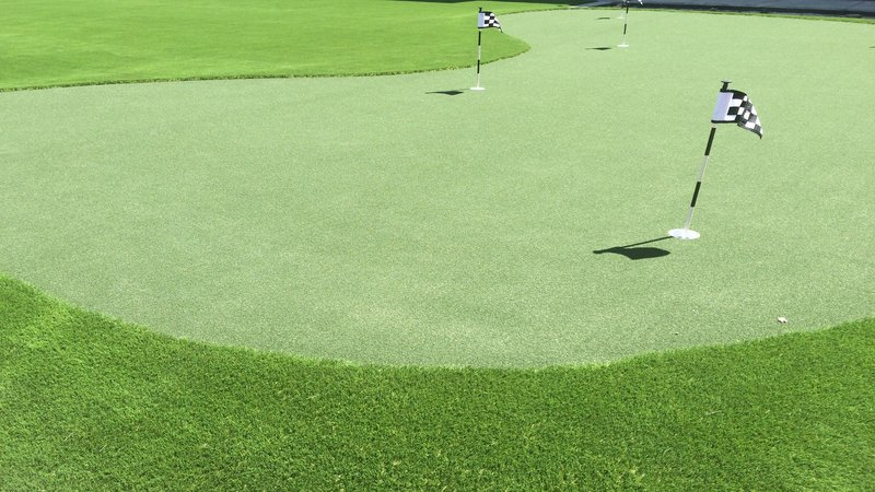 Staybridge Suites Carlsbad - San Diego-Practice your putting at our courtyard green<br/>Image from Leonardo
