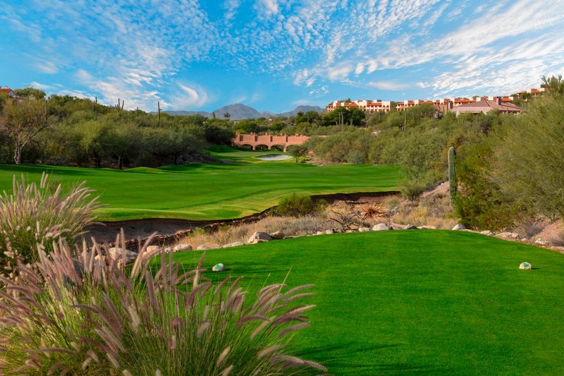 The Westin La Paloma Resort & Spa-Golf Course<br/>Image from Leonardo
