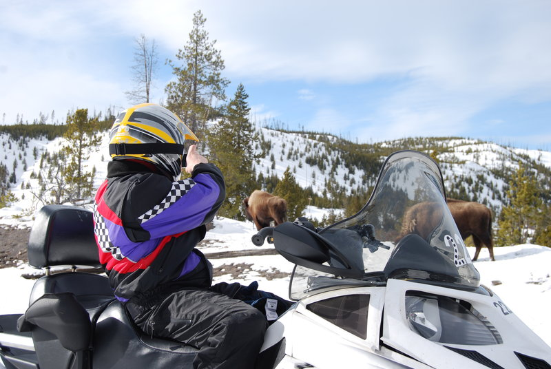 Holiday Inn West Yellowstone-Snowmobiling In Yellowstone National Park<br/>Image from Leonardo