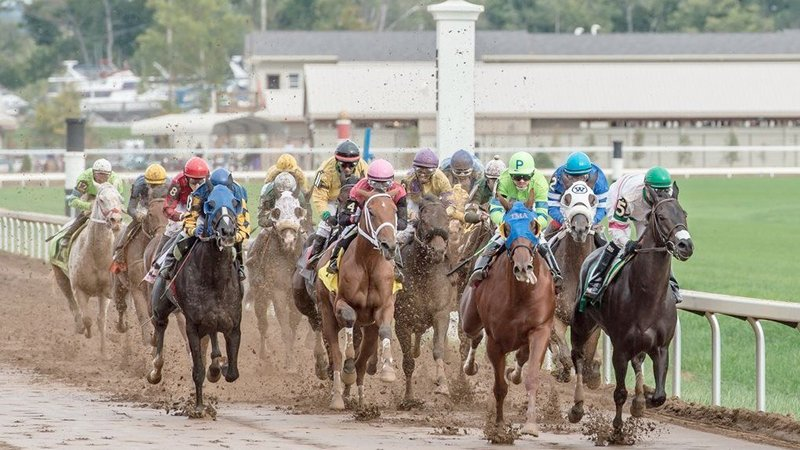 Holiday Inn Hotel & Suites Cincinnati-Eastgate (I-275e)-Watch Thoroughbred racing from nearby Belterra Park.<br/>Image from Leonardo