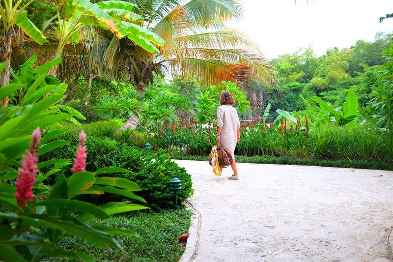 Casa Colonial Beach & Spa-Garden Walkways<br/>Image from Leonardo