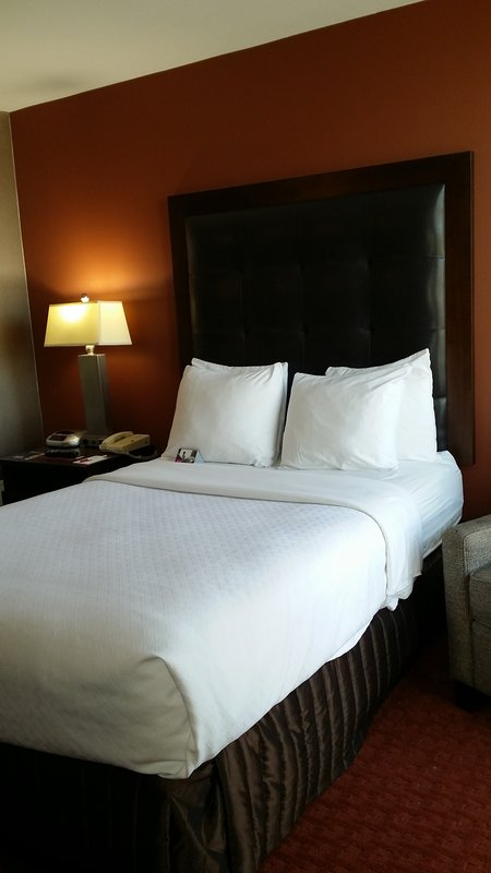Crowne Plaza Sacramento Northeast-Single Bed Guest Room<br/>Image from Leonardo