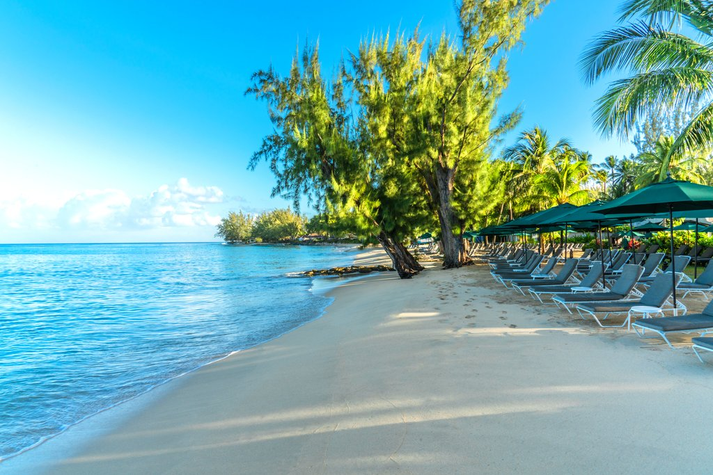 Coral Reef Club-The Beach<br/>Image from Leonardo