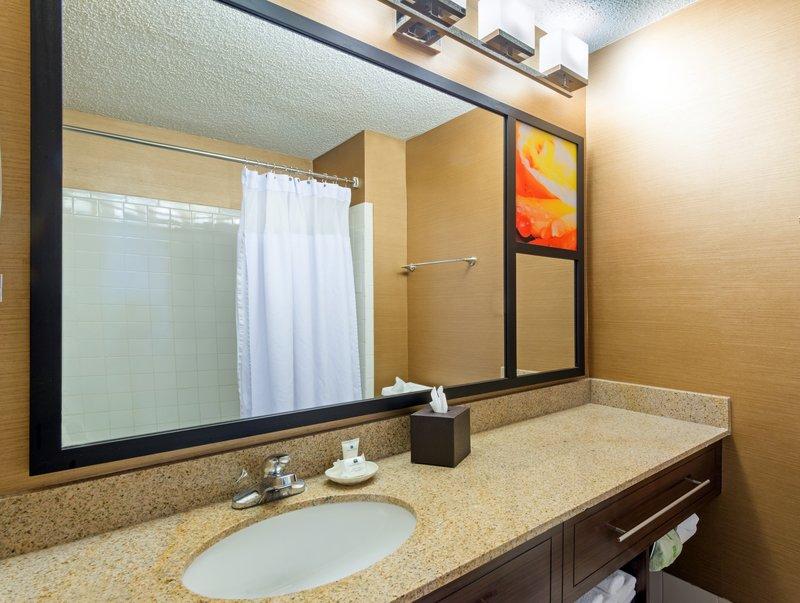 Crowne Plaza Dallas Galleria - Addison-Standard Guest Bathroom<br/>Image from Leonardo
