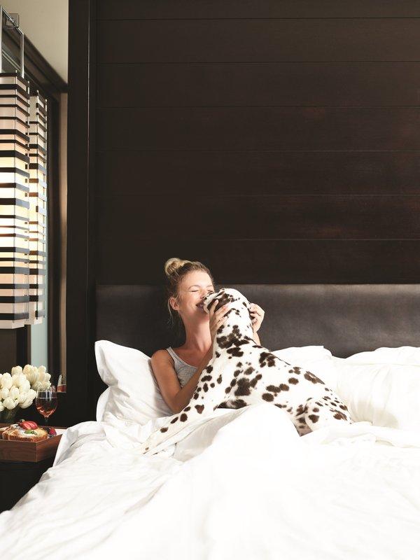 Vdara Hotel & Spa at Aria Las Vegas - Vdog Suite Bed <br/>Image from Leonardo