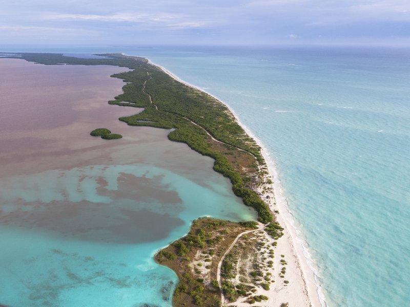 TRS Coral - Destino <br/>Image from Leonardo