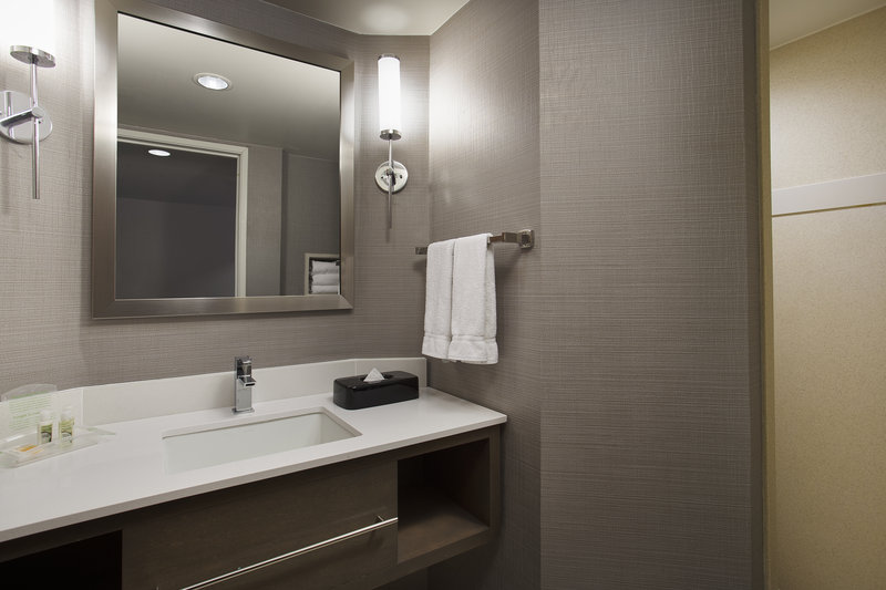 Holiday Inn Grand Rapids - Airport-King Bathroom - All with Walk in Shower<br/>Image from Leonardo