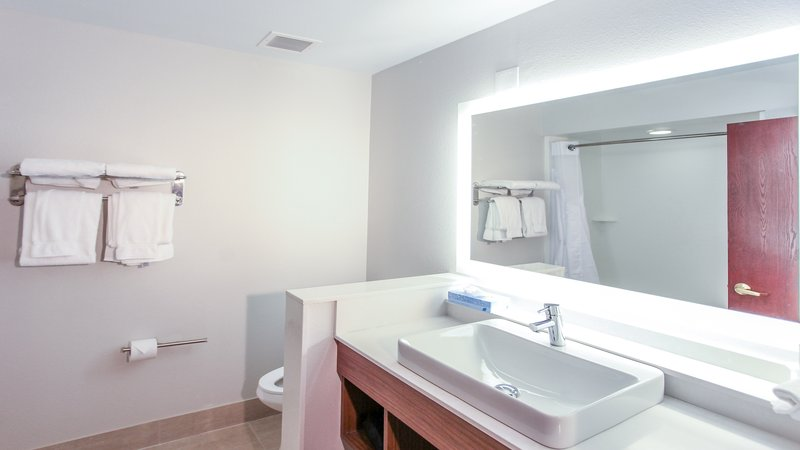 Holiday Inn Express Daytona Beach - Speedway-Guest Bathroom<br/>Image from Leonardo