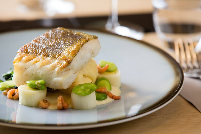 Courtyard Brussels-Courtyard Lounge & Dining - Cod Fish<br/>Image from Leonardo
