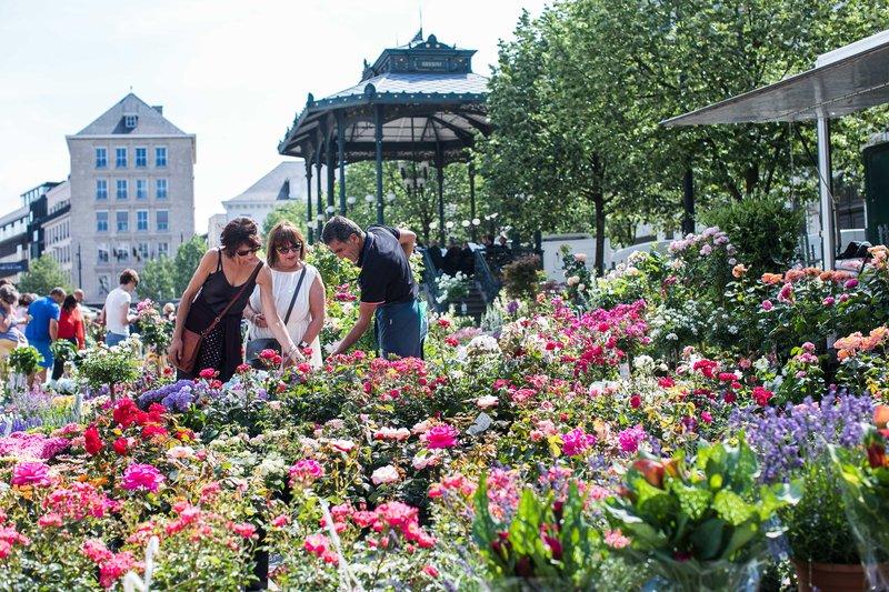 Holiday Inn Express Gent-Kouter Square Flower Market (3.5km)<br/>Image from Leonardo