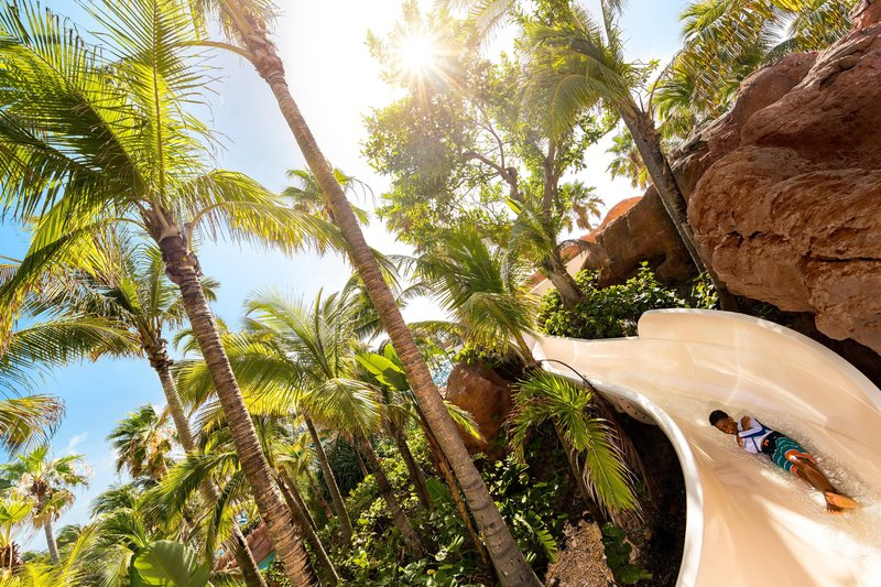 The Royal at Atlantis - Jungle Slide <br/>Image from Leonardo