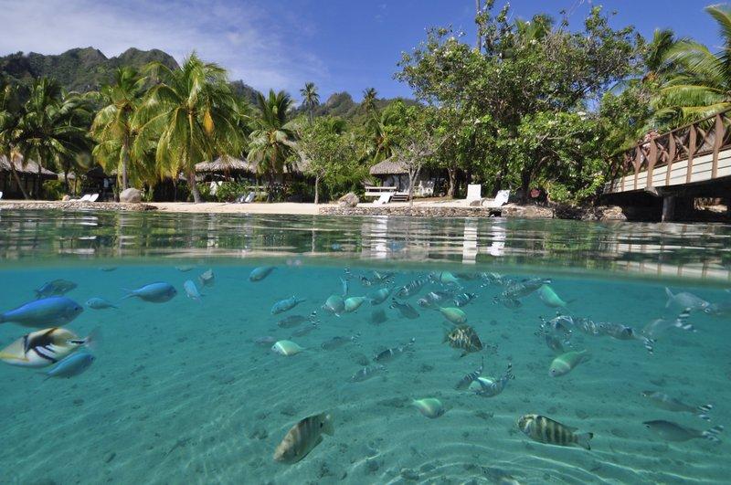 Intercontinental Moorea Resort-Water Activities<br/>Image from Leonardo