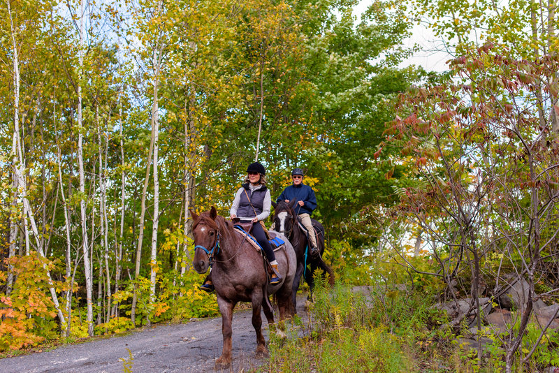 Deerhurst Resort-Trail Rides on Horseback<br/>Image from Leonardo