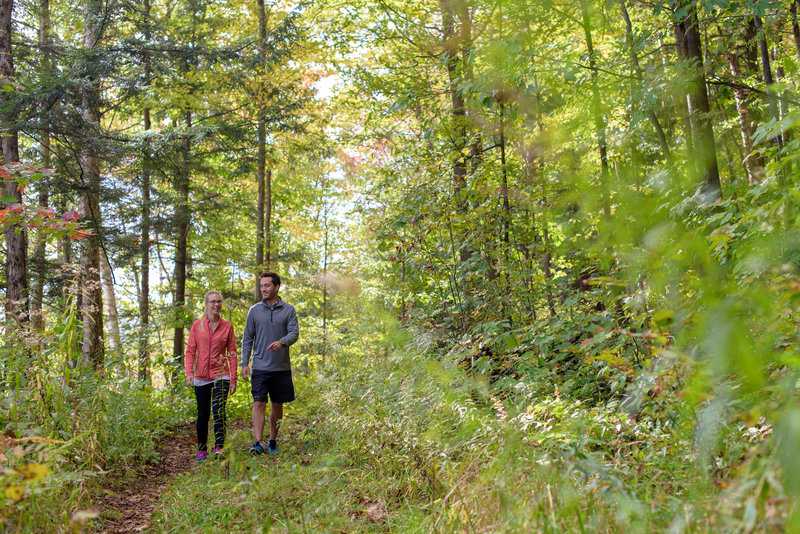 Deerhurst Resort-Fall Hiking<br/>Image from Leonardo