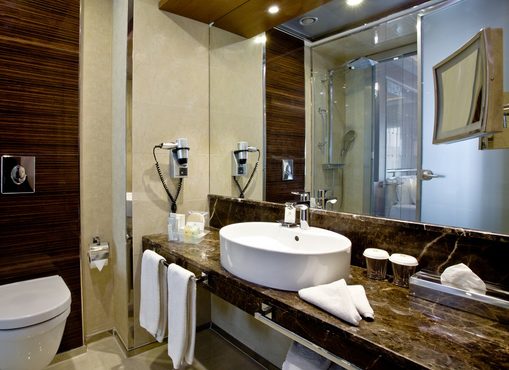 Holiday Inn Ankara-Kavaklidere-Comfortable ADA/Disabled Guest Bath<br/>Image from Leonardo