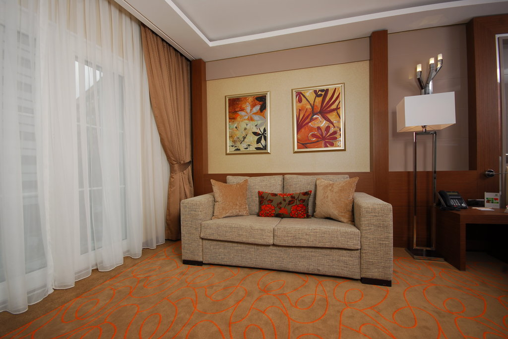 Holiday Inn Ankara-Kavaklidere-Sleeper Sofa<br/>Image from Leonardo