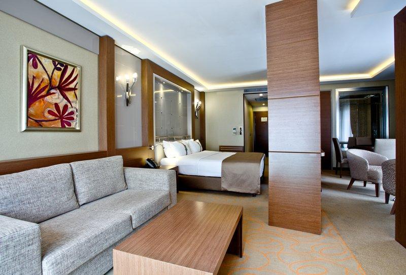 Holiday Inn Ankara-Kavaklidere-Relaxing King Nonsmoking Suite Living Room<br/>Image from Leonardo