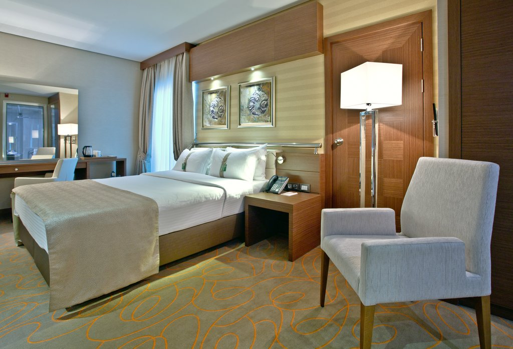 Holiday Inn Ankara-Kavaklidere-Accommodating One Bed ADA/Disabled Guest Room<br/>Image from Leonardo