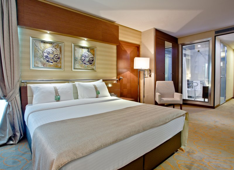 Holiday Inn Ankara-Kavaklidere-One Bed ADA/Disabled Guest Room<br/>Image from Leonardo