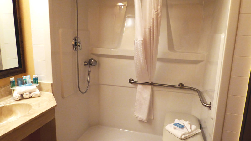 Holiday Inn Express & Suites Grande Prairie-Wheelchair Accessible Shower<br/>Image from Leonardo