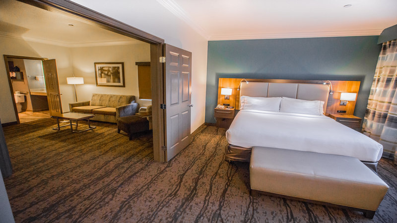 Holiday Inn Express and Suites-Suite<br/>Image from Leonardo