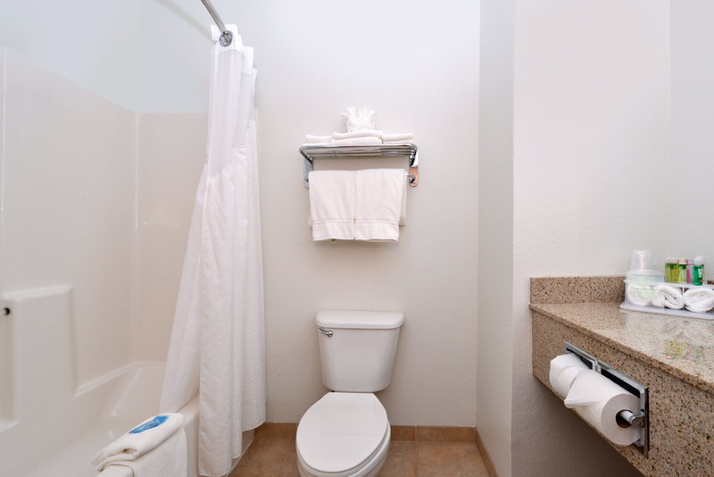 Holiday Inn Express & Suites Omaha West-Guest Bathroom 15 miles from Omaha's Henry Doorly Zoo & Aquarium<br/>Image from Leonardo