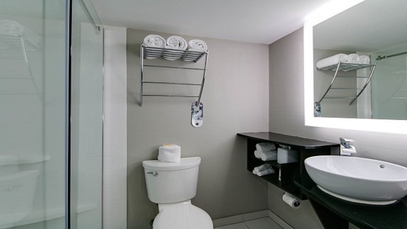 Holiday Inn Manhattan At The Campus-King Guest Room Shower<br/>Image from Leonardo