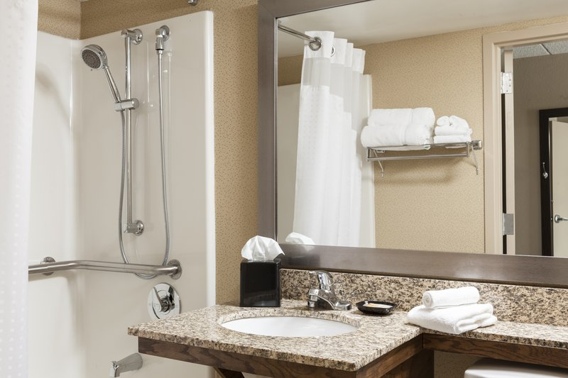 Holiday Inn Hotel & Suites Des Moines-Northwest-Accessible Guest Bathroom<br/>Image from Leonardo