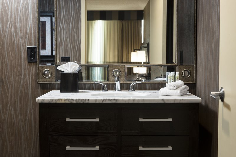 Holiday Inn Hotel & Suites Des Moines-Northwest-Guest Bathroom Amenities<br/>Image from Leonardo
