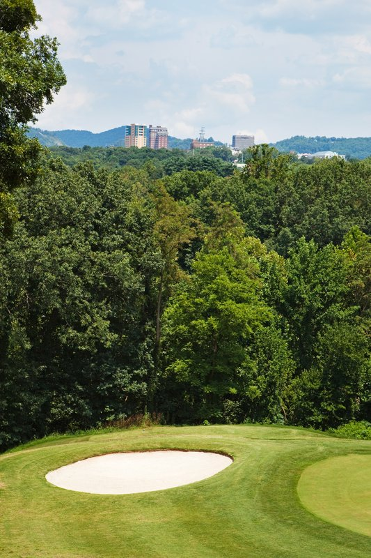 Crowne Plaza Resort Asheville-Stop by and play a few holes of golf at our scenic 9-hole course.<br/>Image from Leonardo