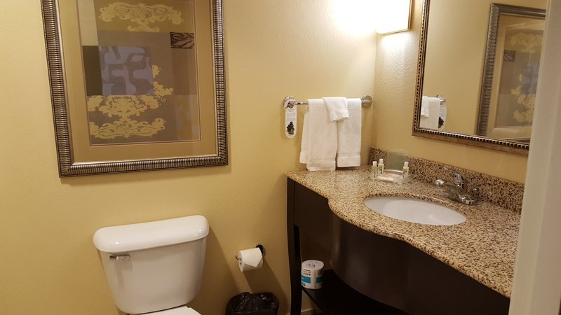 Holiday Inn Quincy East-Our standard Guest Bathroom.<br/>Image from Leonardo