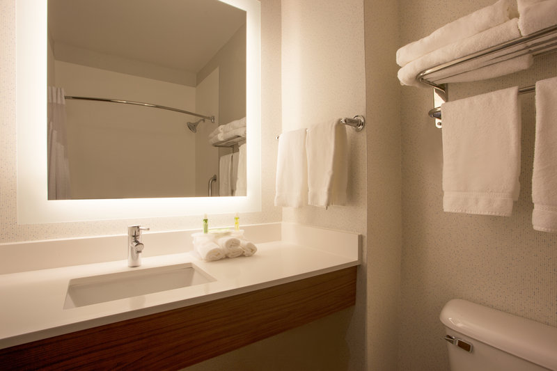 Holiday Inn Express & Suites Davis-University Area-Guest Bathroom<br/>Image from Leonardo