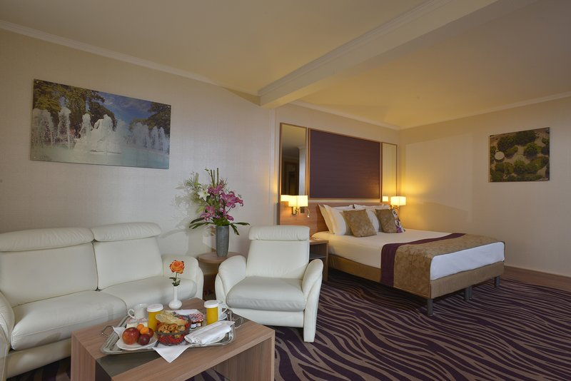 Crowne Plaza Toulouse-Junior Suite<br/>Image from Leonardo