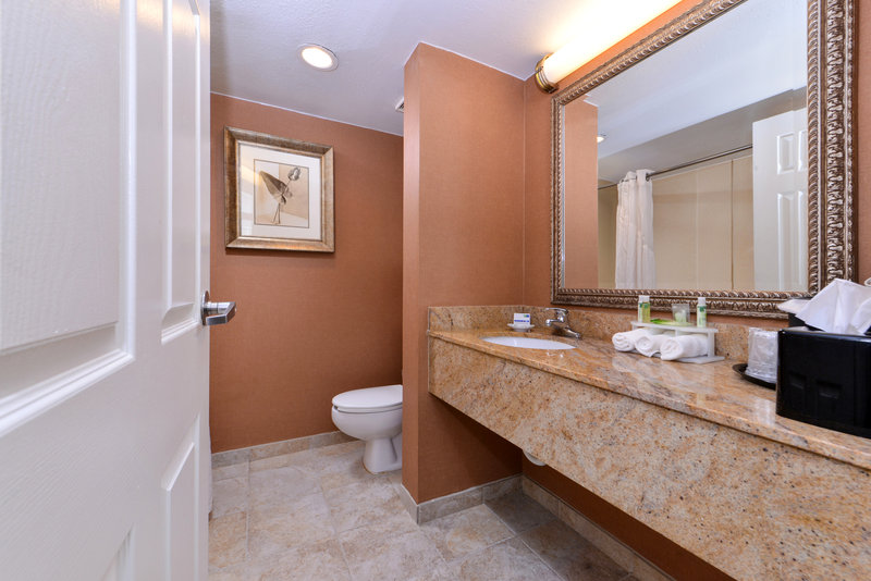 Holiday Inn Express Clearwater East - Icot Center-Guest Bathroom<br/>Image from Leonardo