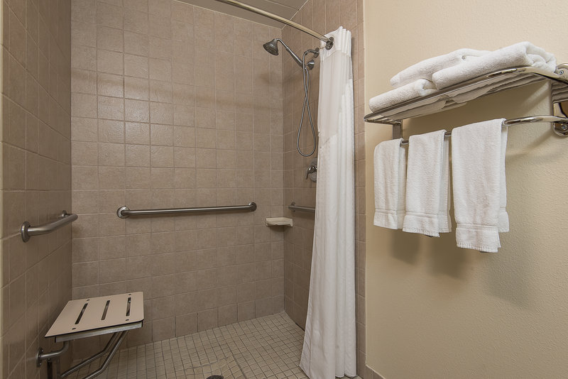 Holiday Inn Express Roanoke-Civic Center-ADA/Handicapped Accessible Guest Bathroom with Roll-in Shower<br/>Image from Leonardo