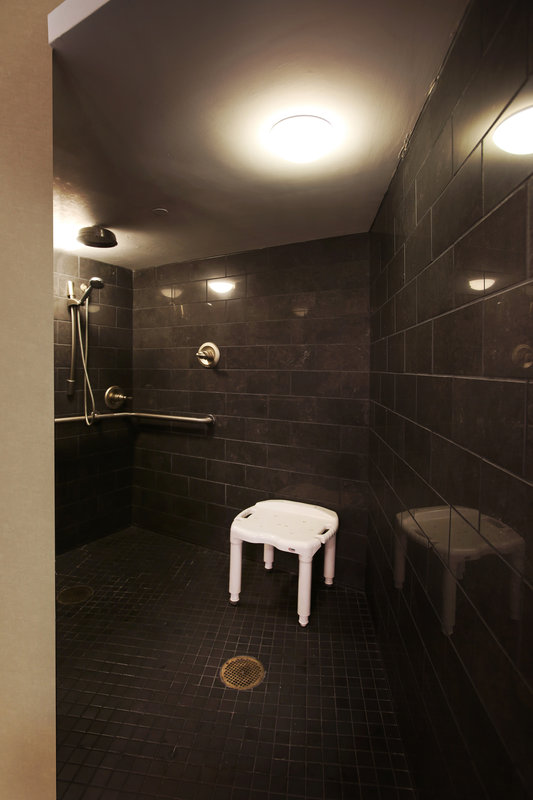 Crowne Plaza Syracuse-Roll in Shower<br/>Image from Leonardo